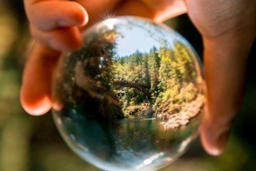 environmental protection Revision and exams